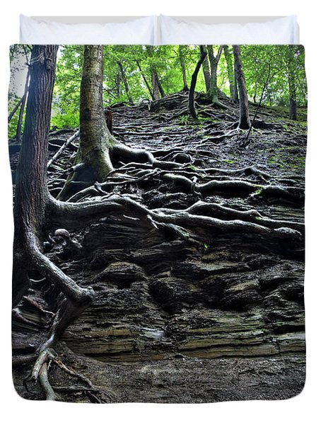 Roots In Shale Duvet Cover by Ted Kinsman