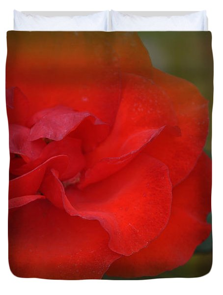 Rose Dream Duvet Cover by Mary Machare
