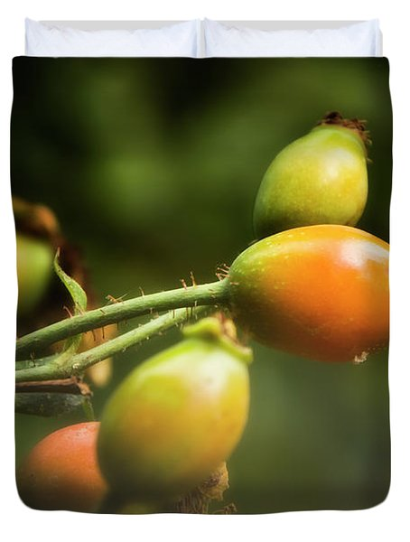 Duvet Cover featuring the photograph Rose Hips by Albert Seger