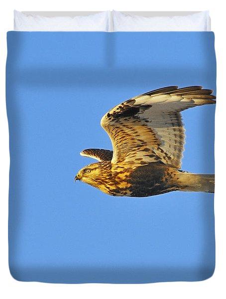 Rough-legged Hawk Duvet Cover by Tony Beck