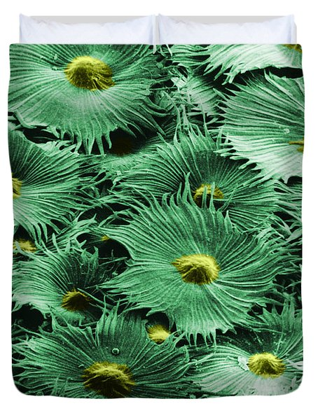 Russian Silverberry Leaf  Duvet Cover by Asa Thoresen and Photo Researchers