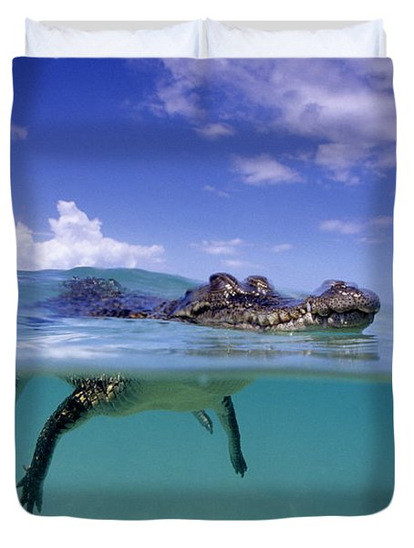 Salt Water Crocodile Duvet Cover by Franco Banfi and Photo Researchers