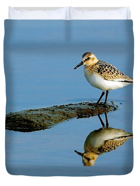 Sanderling Reflecting Duvet Cover by Tony Beck