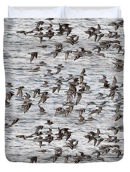 Duvet Cover featuring the photograph Sandpipers In Flight by Dan Friend
