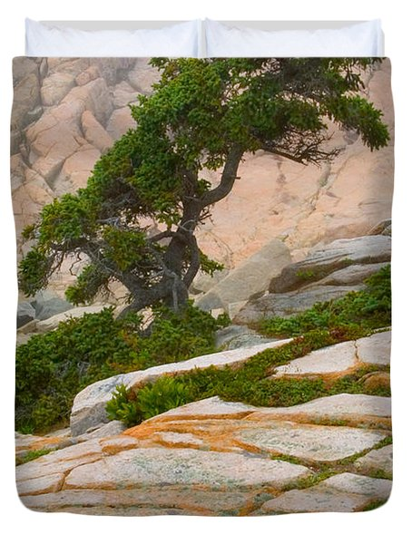 Duvet Cover featuring the photograph Schoodic Cliffs by Brent L Ander
