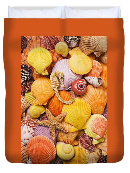 Sea Horse Starfish And Seashells  Duvet Cover by Garry Gay