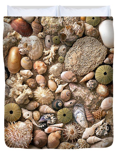 Sea Shells  Duvet Cover by Mauro Celotti