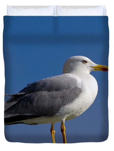 Duvet Cover featuring the photograph Seagull by David Gleeson