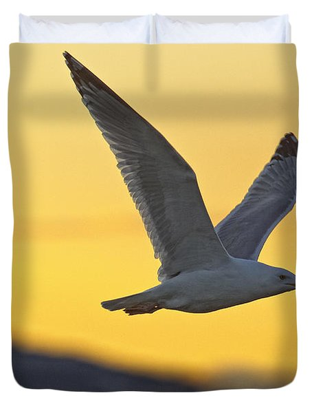 Seagull Flying At Dusk With Sunset Duvet Cover by Robert Postma
