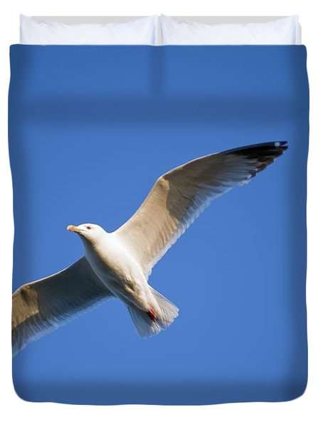 Seagull Flying Duvet Cover by Keith Levit