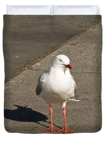 Seagull In The Summer Sun Duvet Cover by U Schade