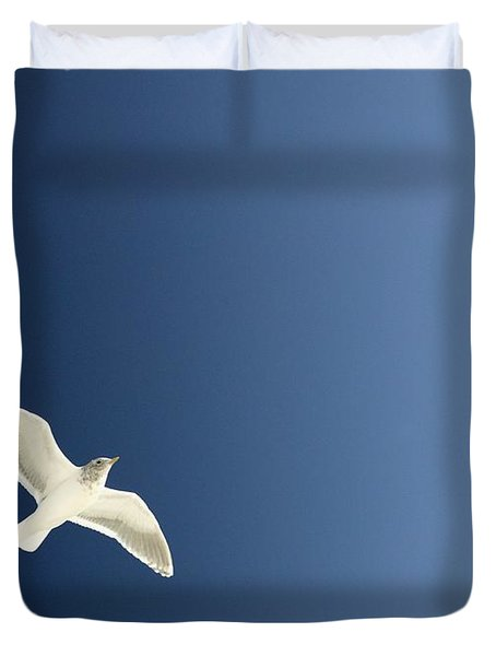 Seagull Soaring Duvet Cover by Con Tanasiuk