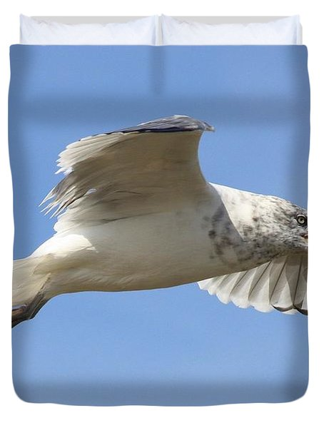 Seagull With Snail Duvet Cover by Carol Groenen