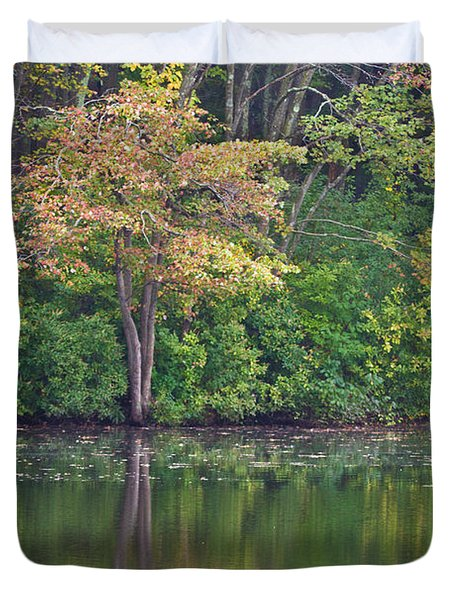 Seasons Change Duvet Cover by Karol Livote