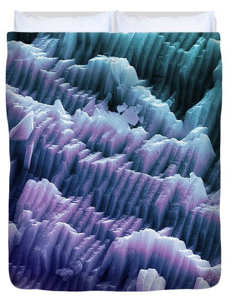 Sem Of A Blue Mussel Shell Duvet Cover by Ted Kinsman