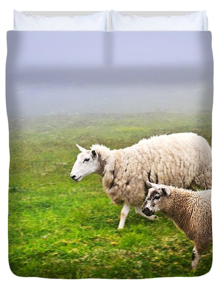 Sheep In Misty Meadow Duvet Cover by Elena Elisseeva