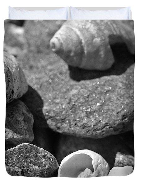Shells I Duvet Cover by David Rucker