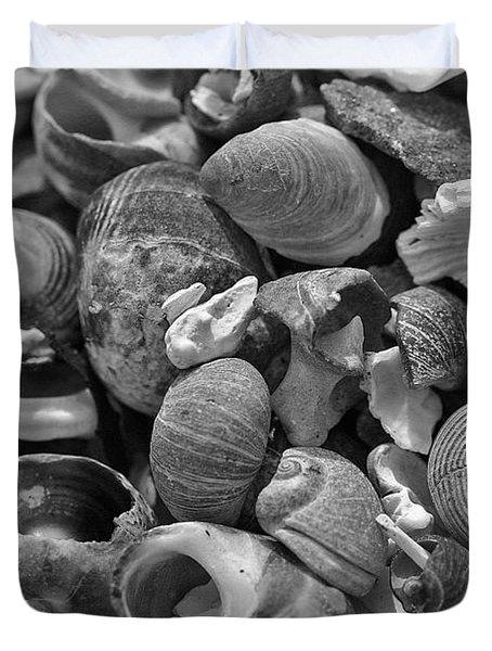 Shells V Duvet Cover by David Rucker