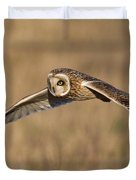 Short Eared Owl Hunting Duvet Cover