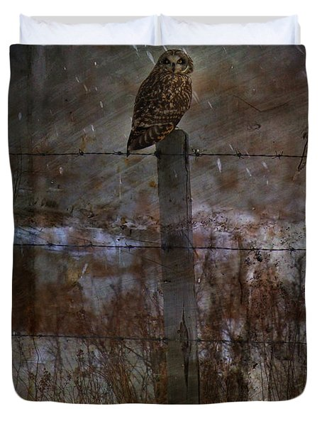 Short Eared Owl Duvet Cover by Empty Wall