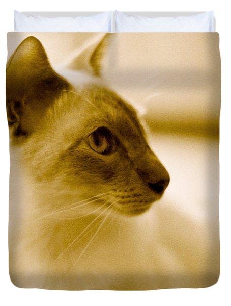 Siamese Feline Duvet Cover