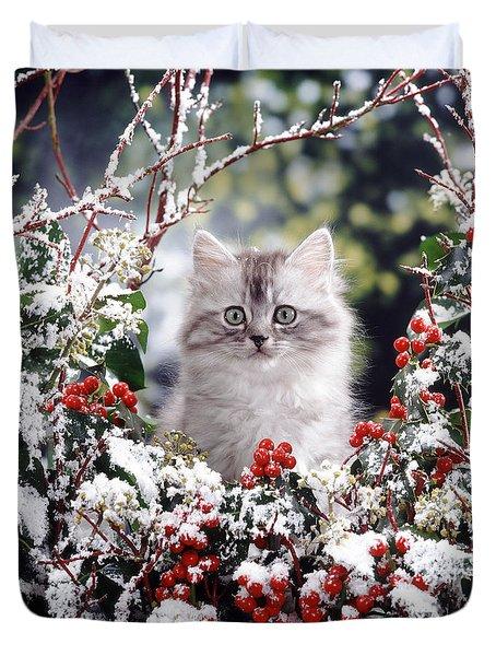Silver Tabby Kitten Duvet Cover by Jane Burton