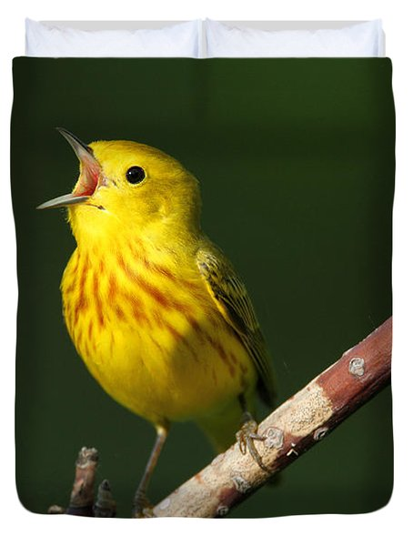 Singing Yellow Warbler Duvet Cover