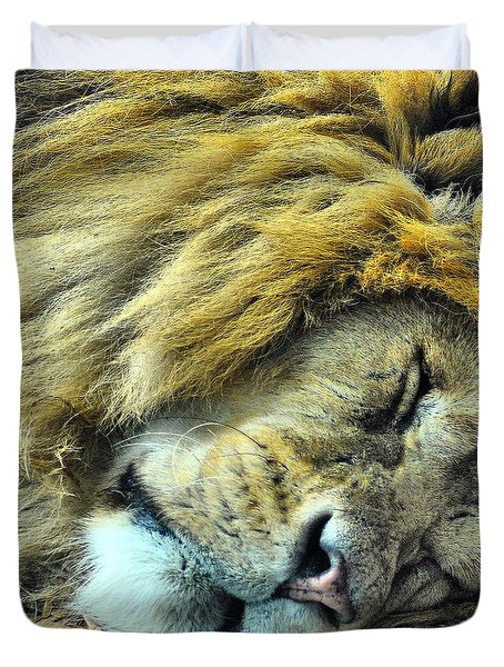 Sleeping Lion Duvet Cover by Chris Thaxter