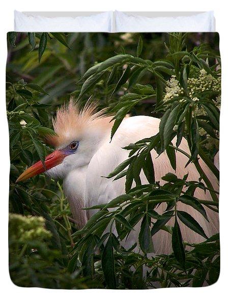 Sleepy Egret In Elderberry Duvet Cover