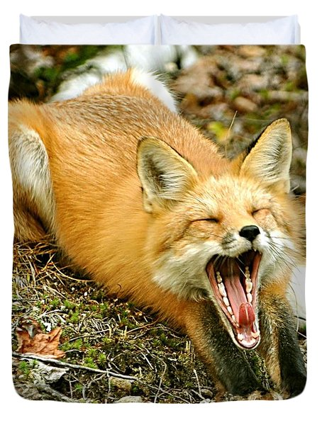 Duvet Cover featuring the photograph Sleepy Fox by Rick Frost
