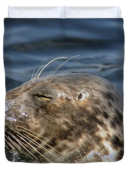 Sleepy Seal Duvet Cover by Rick Frost