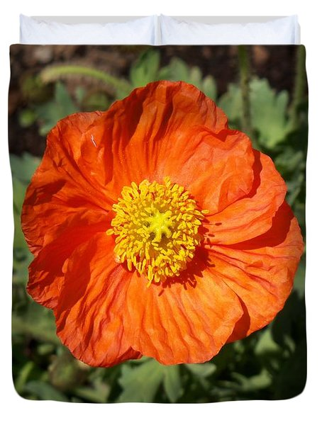 Small Orange Poppy Duvet Cover