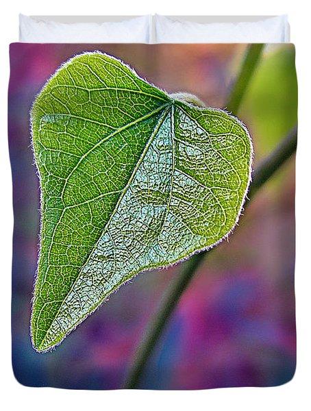 Smilax Duvet Cover by Judi Bagwell