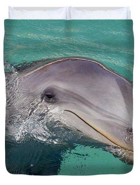 Smiling Atlantic Bottlenose Dolphin Duvet Cover by Dave Fleetham