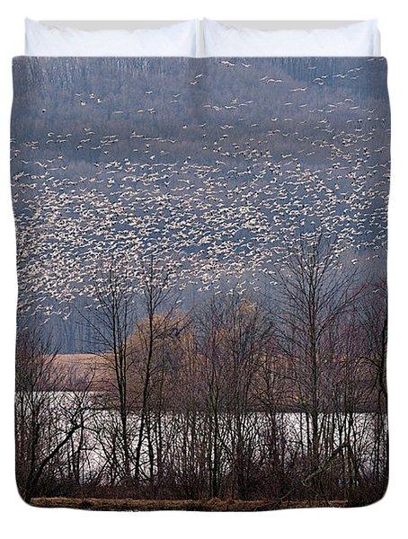 Snow Geese Rising Duvet Cover