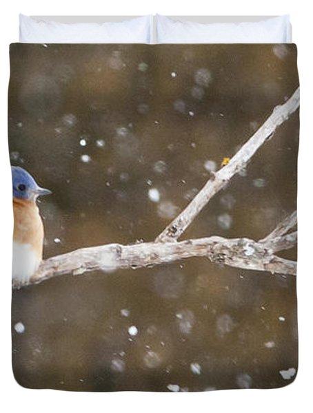 Snowy Bluebird Duvet Cover