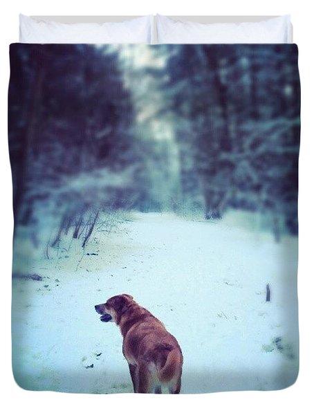 Snowy Dog Walk Duvet Cover