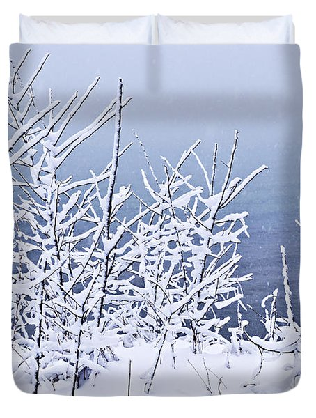 Snowy Trees Duvet Cover by Elena Elisseeva