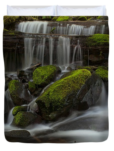Sol Duc Stream Duvet Cover by Mike Reid