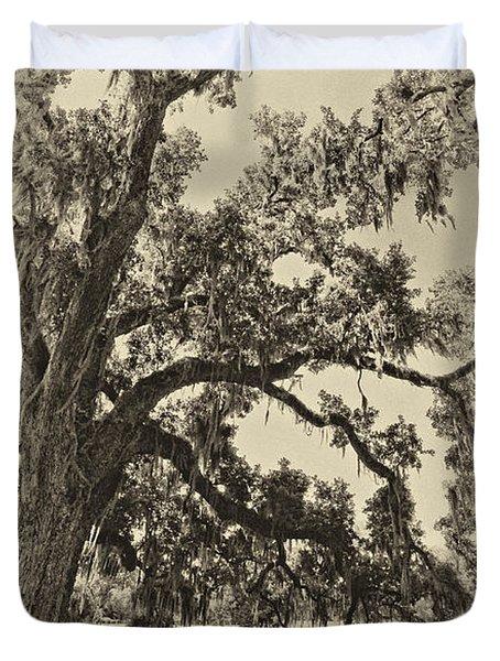 Southern Comfort Sepia Duvet Cover by Steve Harrington