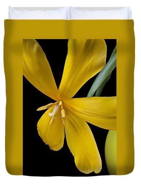 Spent Tulip Duvet Cover by Garry Gay