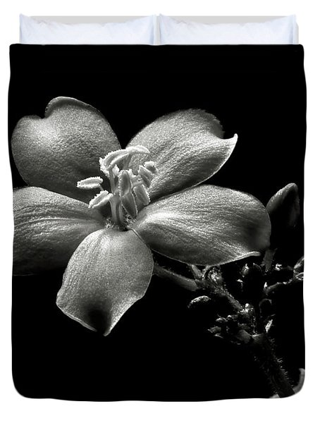 Spicy Jatropha In Black And White Duvet Cover