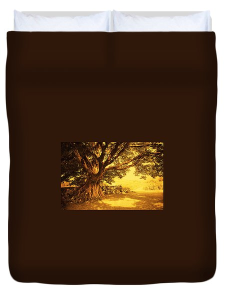 Spiritual Place. Wicklow Mountains. Ireland Duvet Cover by Jenny Rainbow