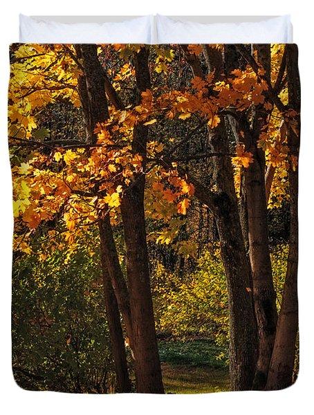 Splendor Of Autumn. Maples In Golden Dresses Duvet Cover by Jenny Rainbow