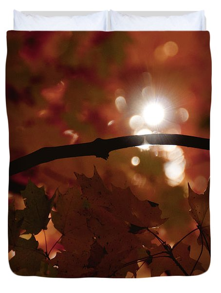 Spotlight On Fall Duvet Cover by Cheryl Baxter