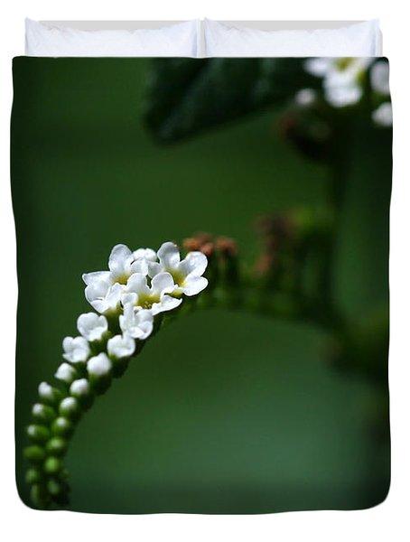 Spray Of White Flowers Duvet Cover by Sabrina L Ryan
