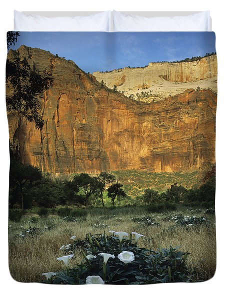 Spring At Big Bend Duvet Cover