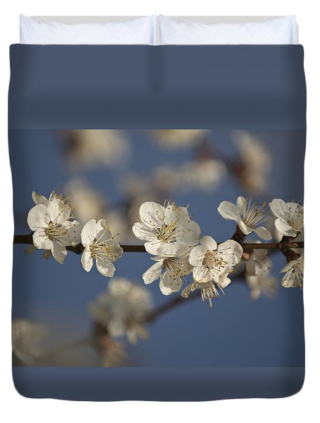 Spring Blossoms Duvet Cover by Ayhan Altun