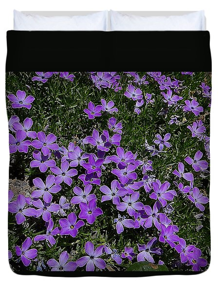 Duvet Cover featuring the photograph Spreading Flox Wildlfower by Blair Wainman