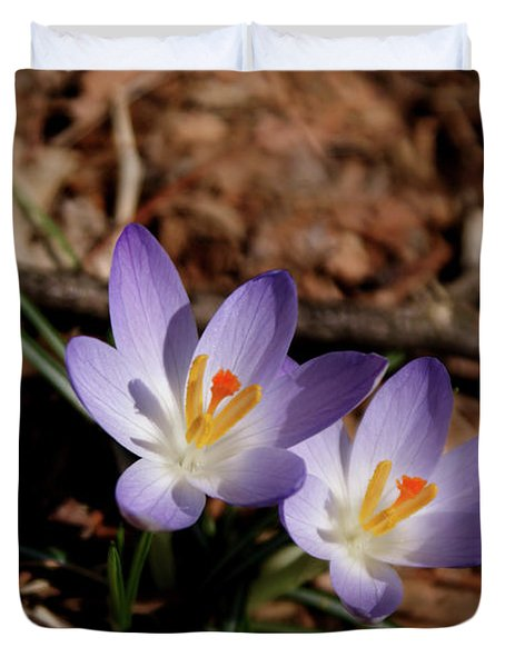 Duvet Cover featuring the photograph Spring Crocus by Paul Mashburn